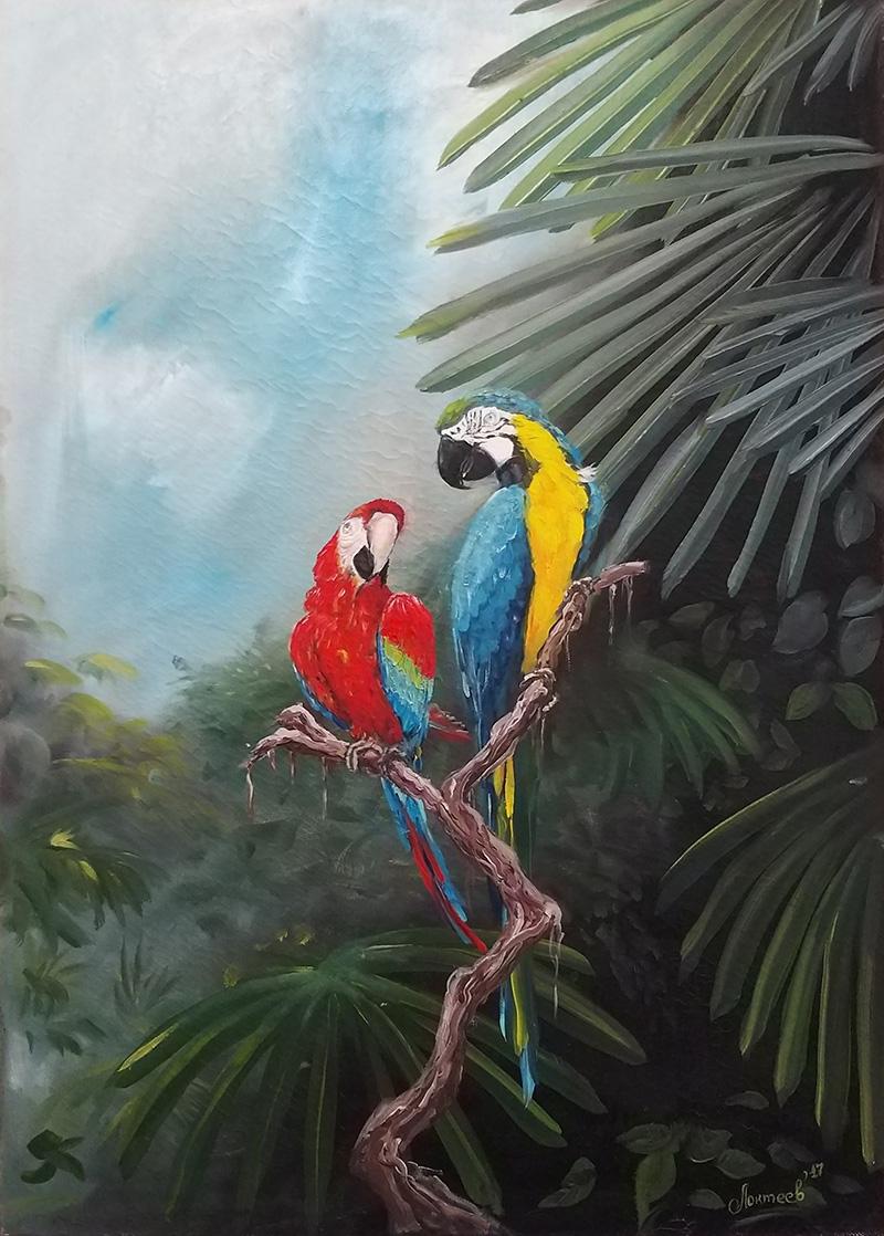 Романтика джунглей