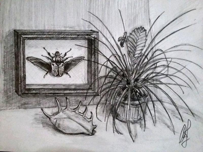 Карандашные зарисовки